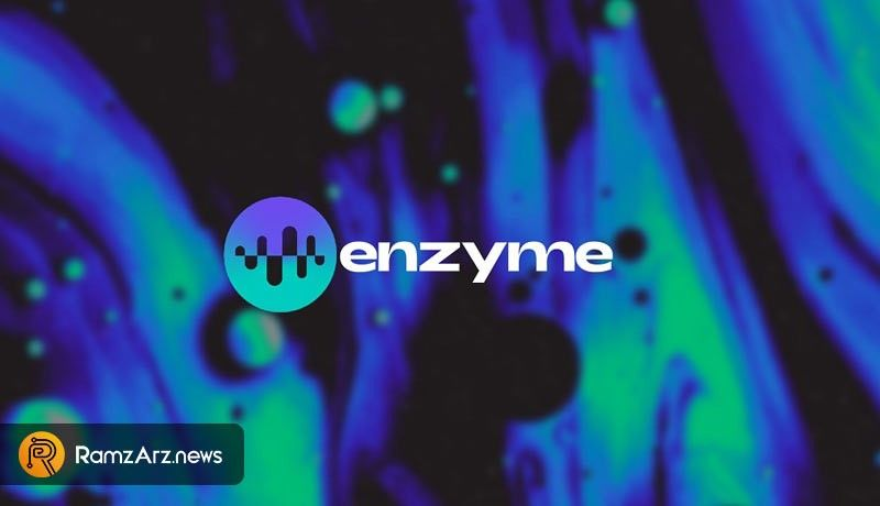 what is Enzyme
